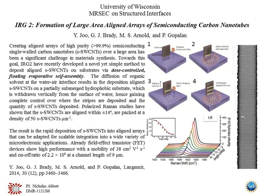 IRG2 Gopalan Semiconducting Carbon Nanotubes